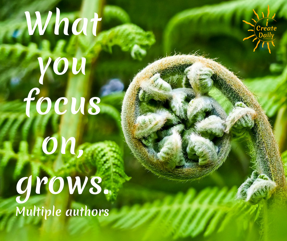 What are you planting in your garden of life? Strengths are like the plants in your garden. You plant the seeds you want to grow and tend them well. The more they grow the less room for weeds. What you focus on grows, whether in this garden metaphor or in your life and work.