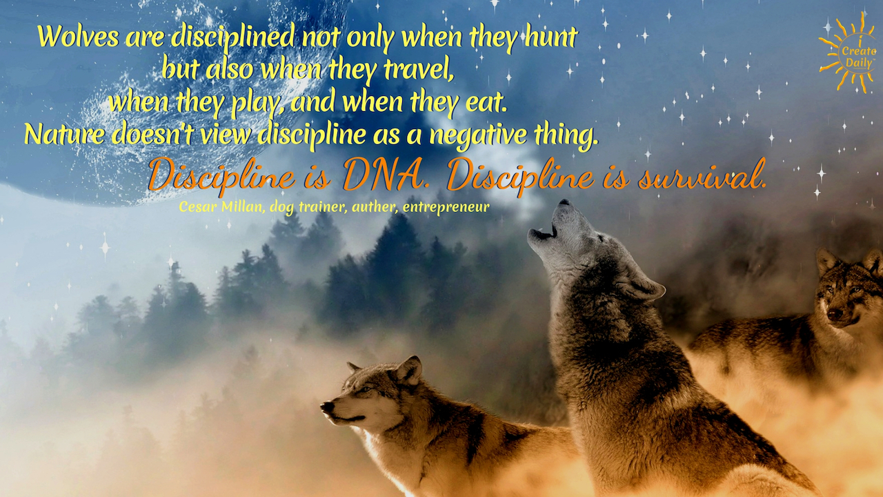 """Wolves are disciplined not only when they hunt but also when they travel, when they play, and when they eat. Nature doesn't view discipline as a negative thing. Discipline is DNA. Discipline is survival."" ~Cesar Millan, dog trainer, auther, entrepreneur #AchievementQuotes #Goal #Inspirational #Wisdom #Determination #Discipline #Motivation #Power"