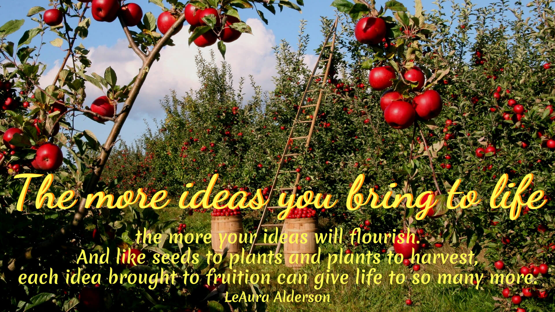 The more ideas you bring to life, the more your ideas will flourish. And like seeds to plants, and plants to harvest, each idea brought to fruition can give life to so many more. ~LeAura Alderson, cofounder- iCreateDaily.com® #IdeationTools #Creativity #CreativeIdeas #Positivity #iCreateDaily #GardenMetaphor #GardenAnalogy