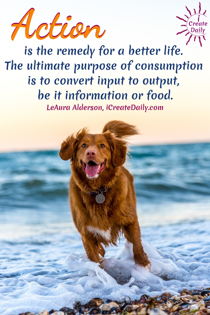 ACTION IS THE REMEDY: Action is the remedy for a better life. The ultimate purpose of consumption is to convert input to output, be it information or food. #Action #TakeAction #Purpose #Overwhelm