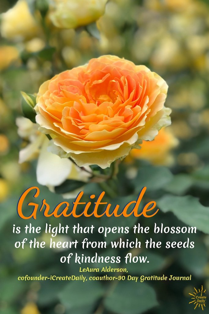 """Gratitude is the light that opens the blossom of the heart from which the seeds of kindness flow."" ~LeAura Alderson, cofounder-iCreateDaily, coauthor-90 Day Gratitude Journal"