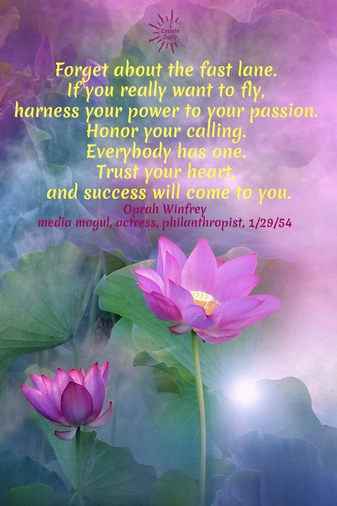 Forget about the fast lane. If you really want to fly, harness your power to your passion. Honor your calling. Everybody has one. Trust your heart, and success will come to you. ~Oprah Winfrey, media mogul, actress, philanthropist, 1/29/54