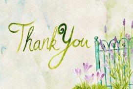 The Power of Gratitude to Transform Your Life
