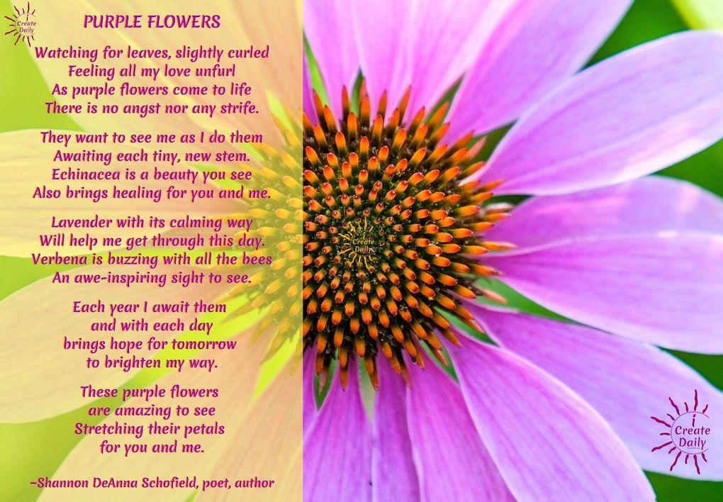 Purple Flowers Poem by Shannon Schofield, #PurpleFlowers #PurpleFlowerDrawings #PurpleFlowerArt #PurpleFlowerPoem