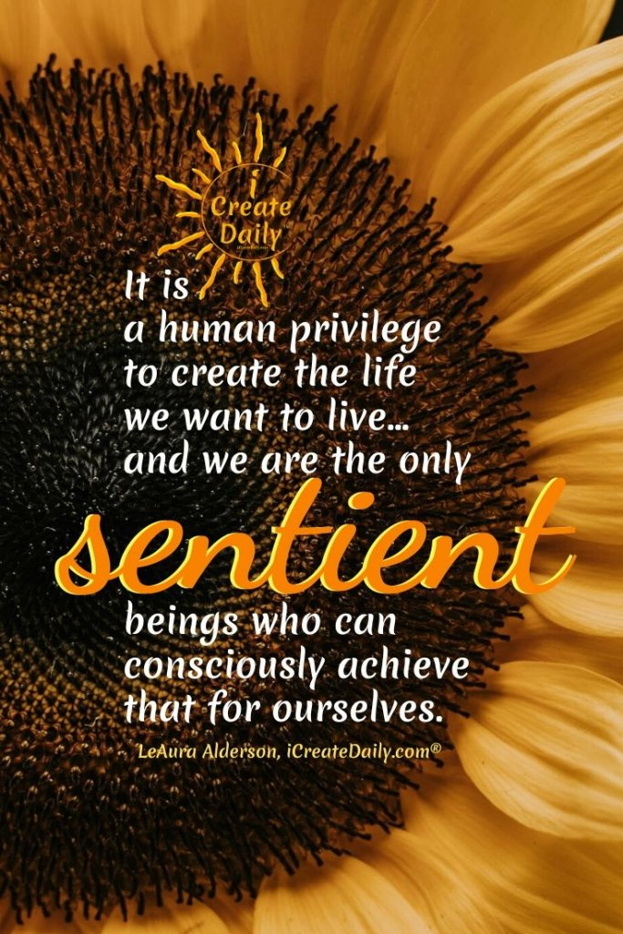 """""""It is a human privilege to create the life we want to live… and we are the only sentient beings who can consciously achieve that for ourselves."""" ~LeAura Alderson, cofounder-iCreateDaily.com® #CreateTheLife #Privilege #Creators #ConsciousCreators"""