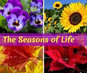 Seasons of Life - iCreateDaily.com