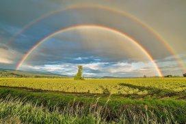 Double rainbow - Transmutation - Positive Energy - Negativity to Positivity #PositiveEnergy #NegativeToPositive #NegativityToPositivity #Storm #Rainbow #iCreateDaily
