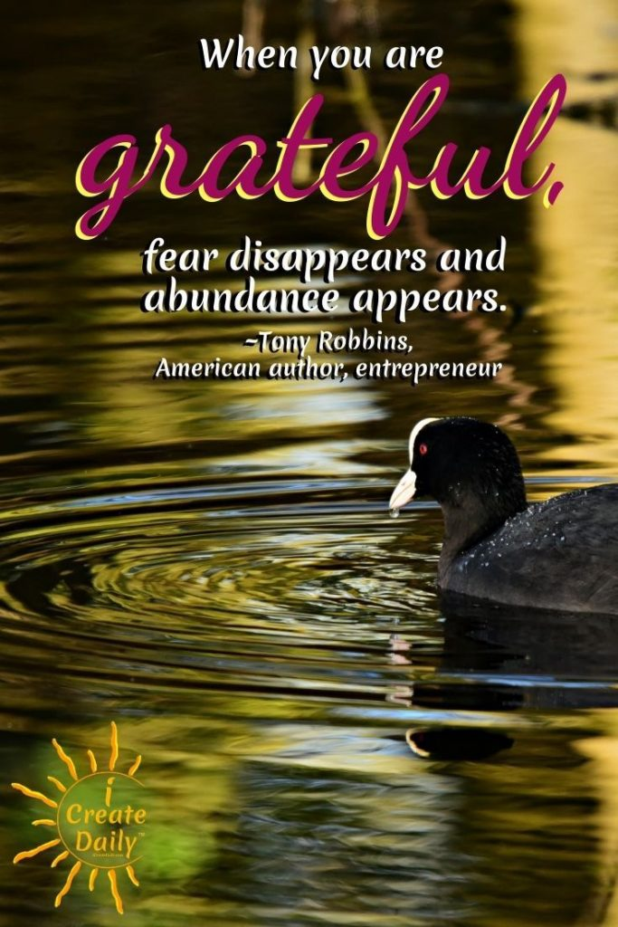 TONY ROBBINS QUOTE ON GRATITUDE: When you are grateful, fear disappears and abundance appears. ~Tony Robbins, entrepreneur, author, coach, b.2/29/1960