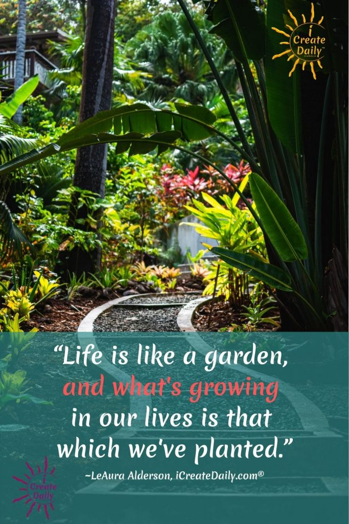"LIFE IS LIKE A GARDEN - LIFE QUOTE; GARDEN QUOTE:""Life is like a garden, and what's growing in our lives is that which we've planted.""By LeAura Alderson, writer, editor, creator iCreateDaily.com®#GardenMetaphor #GardenQuote #LifeQuote #LifeIsLikeAGarden #WhatYouFocusOnGrows"