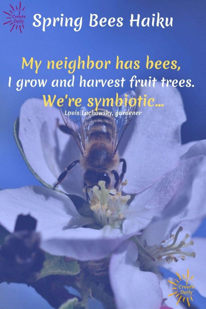 Spring Bees Haiku #SpringHaiku #BeesHaiku #Nature #Symbiotic #NatureHaiku #GardenHaiku #Haiku #LouisLachowsky #iCreateDaily