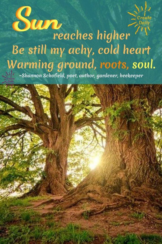 Sun, roots, soil, warming, SPRING HAIKU by Shannon Schofield. #SpringHaiku #SunHaiku, #SoilHaiku,  #ShannonSchofield #iCreateDaily #HaikuPoetry