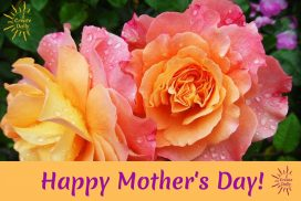 Mother's Day Poems and Quotes for When You Need a Little Help With Words