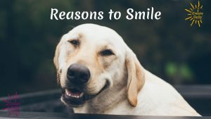 iCD-REASONS TO SMILE-horizontal